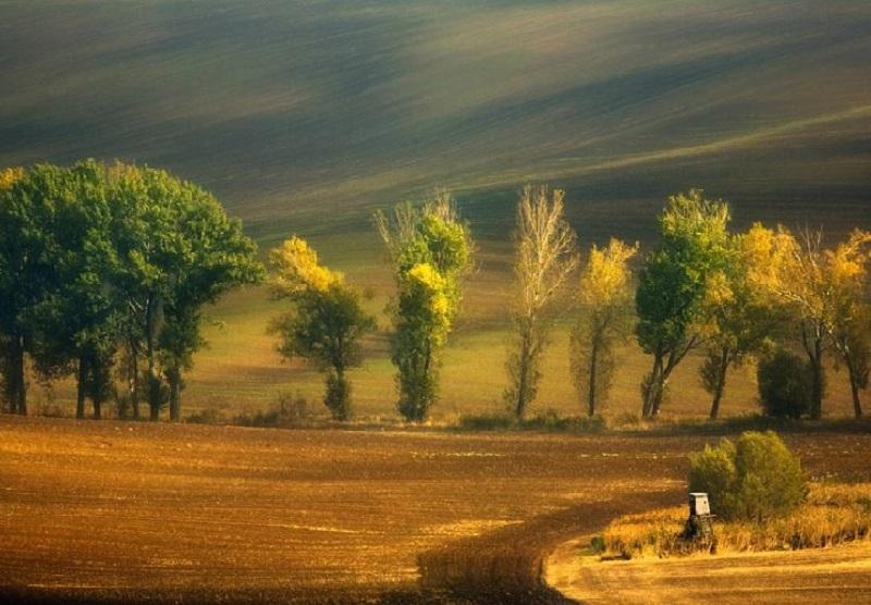 Southern_Moravia_Czech_Reublic_Krzysztof_Browko_R-7