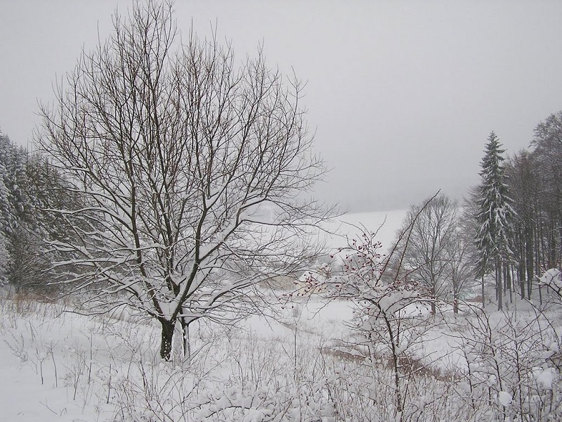 The Wintery Wonderland at Hodkovice u Trutnova