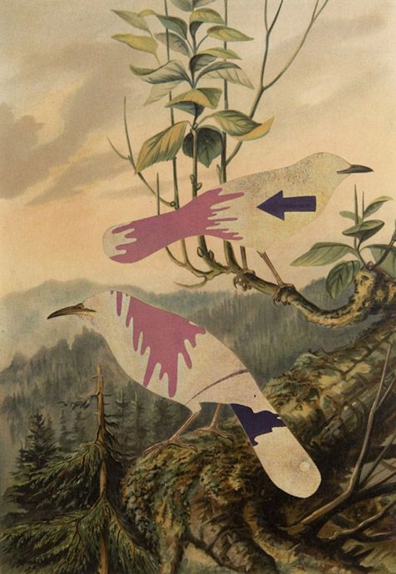 The-Striking-Collages-of-Jiří-Kolář-Tres-Bohemes-9