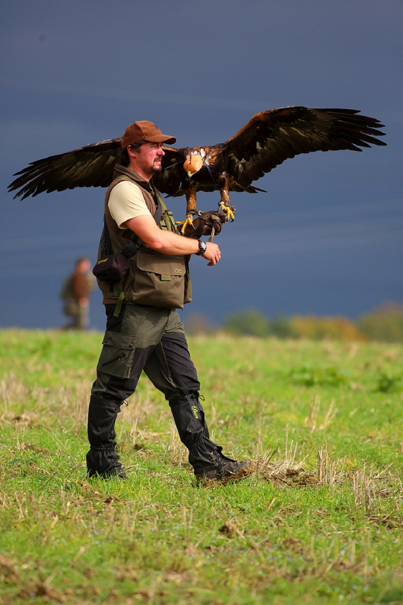 Czech Falconers and Their Timeless Tradition of Falconry