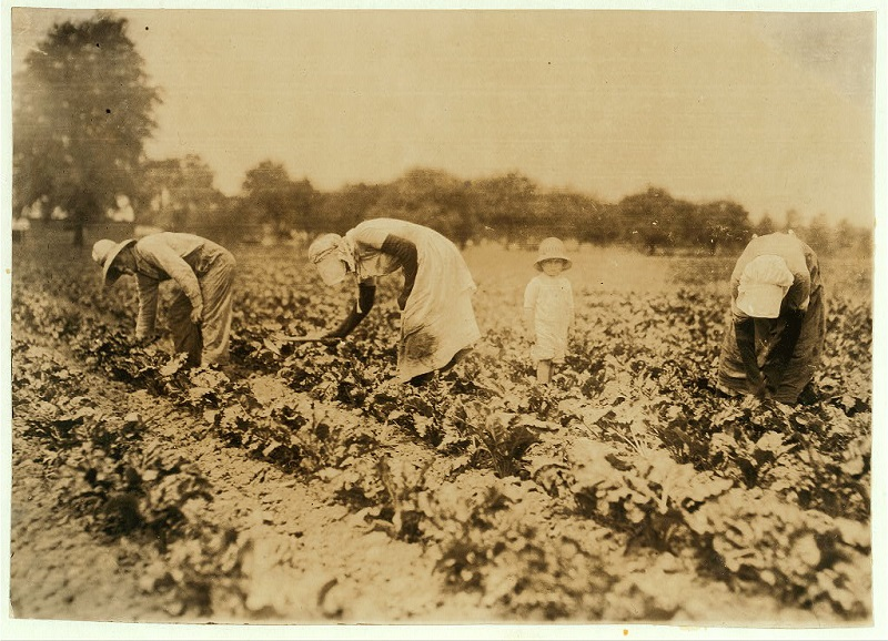 Bohemian Farming Families of the Early 1900s